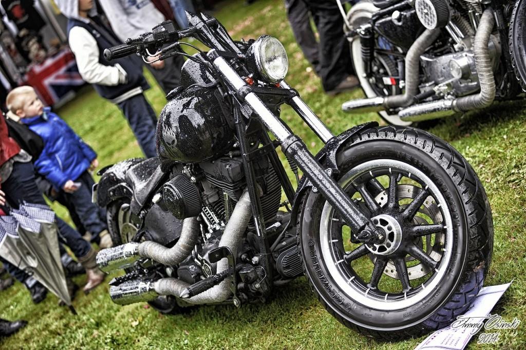 show bike 12