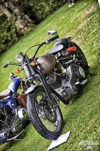 show bike10