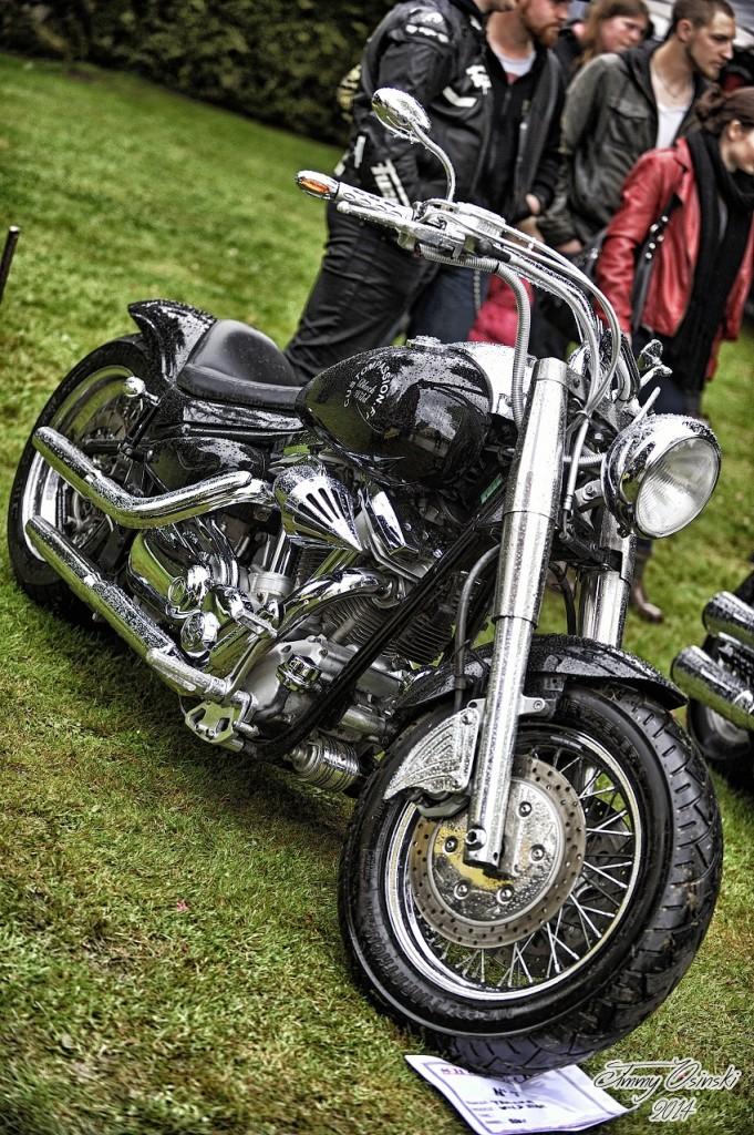show bike11